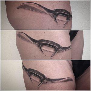 @realistic.ink @tattoorealistic #photooftheday #tattoorealistic #realistictattoo #tattoo #tatouage #ray #mantaray #mantattoo #manta #raie #raiemanta #stipple #stippletattoo #dotwork #dotworktattoo #dots #petitspoints #lespetitspointsdefanny #tattoolausanne #lausannetattoo #lausanne