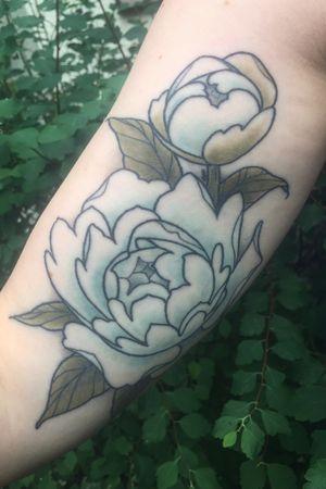 Healed peony flowers