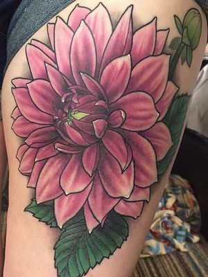 Healed dahlia flower