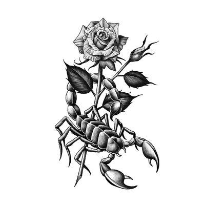 Available design. #blackwork #blackandgrey #Flash #design #traditional #scorpion #rose #illson