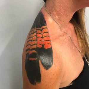 Feesh australian black cockatoo feathers