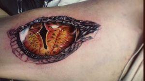 Reptile eye on proces