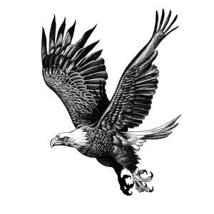Available flash. #blackwork #blackandgrey #traditional #realism #flash #eagle #illson