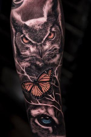 Contact: www.josecontrerasart.com #owl #buterfly #tiger #bng #joseecd #josecontreras #denton #tx #texas
