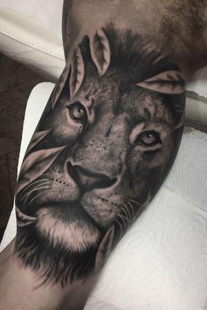 Lion tattoo. #lion #tattoo #realism