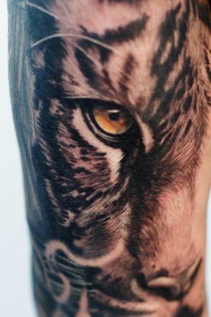 #Onlythebesttattooart #tattoo #ink #cristianrodrigueztattoos #blackandgrey #realism #surrealism #dotwork #ornamental #tribal #gemetric #colortattoo #fuerteventura #tiger #tigertattoo #eyeofthetiger #tigereyes