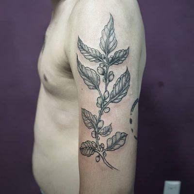 Pé de café do nosso amigo @nathangratao! 😍✍️☕ Faça já seu orçamento! (62) 9 9326.8279 #tattoo #ink #blackwork #tattoolife #Tatuadouro #love #inkedgirls #Tatouage #eletricink #igtattoo #fineline #draw #tattooing #tattoo2me #tattooart #instatattoo #tatuajes #blackink #floral #coffee #coffeetattoo #botanicaltattoo #cafe #tatuagemfeminina #tatuagemmasculina #leaf #leaftattoo