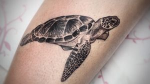 #Onlythebesttattooart #tattoo #ink #cristianrodrigueztattoos #blackandgrey #realism #surrealism #dotwork #ornamental #tribal #gemetric #colortattoo #fuerteventura #seaturtle #turtle #turtletattoo