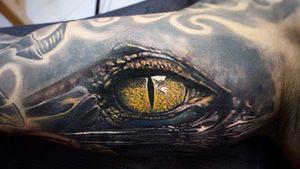 #Onlythebesttattooart #tattoo #ink #cristianrodrigueztattoos #blackandgrey #realism #surrealism #dotwork #ornamental #tribal #gemetric #colortattoo #fuerteventura #eye #eyetattoo #aligator #crocodile #crocodiletattoo