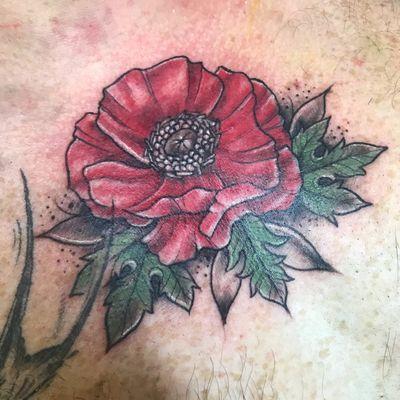 Lil poppy banger on the chest! #poppy #flower #neotraditional #chest #memorial #memorialtattoo #flora #floral #mensfloral