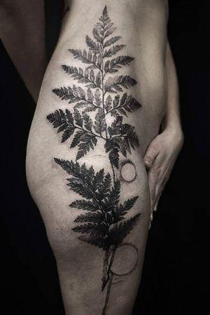 #fern #Black #blackandgreytattoo #blackink #blackinktattoo #dotwork #dot #abstracttattoo #abstract #bodyart #ferntattoo #nature #naturetattoo #tattooart #tattooedwomen