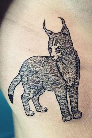 #engraving #lynx #lyon #patounes #gravure #gravuretattoo #cat #delastreettattoo #SalesGossesInk