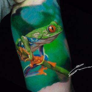 #TreeFrog #Frog #Callidryas #Amazon #Rainforest #Wildlife