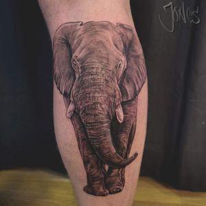 #elephanttattoo #animaltattoo