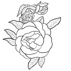 Peony flower fineline