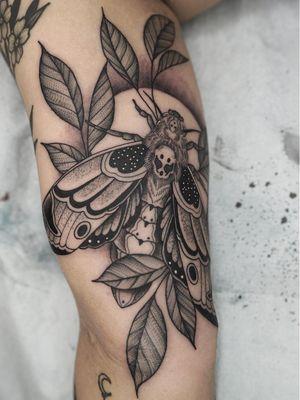 Nature tattoo by Kyle Stacher aka Thief Hands #KyleStacher #ThiefHands #illustrative #linework #nature #organic #fineline #dotwork #flower #leaves #moth