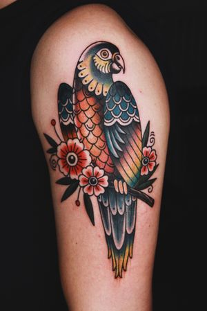 #parrot #parrottattoo #bird #traditional #traditionaltattoo