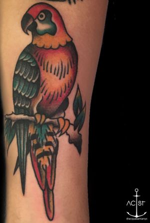 Awesome bold and colorful traditional parrot by @Klever Lliguipuma #parrottattoo #BoldTattoos #traditionaltattoo #sailorjerry #ColorfulTattoos #birdtattoo