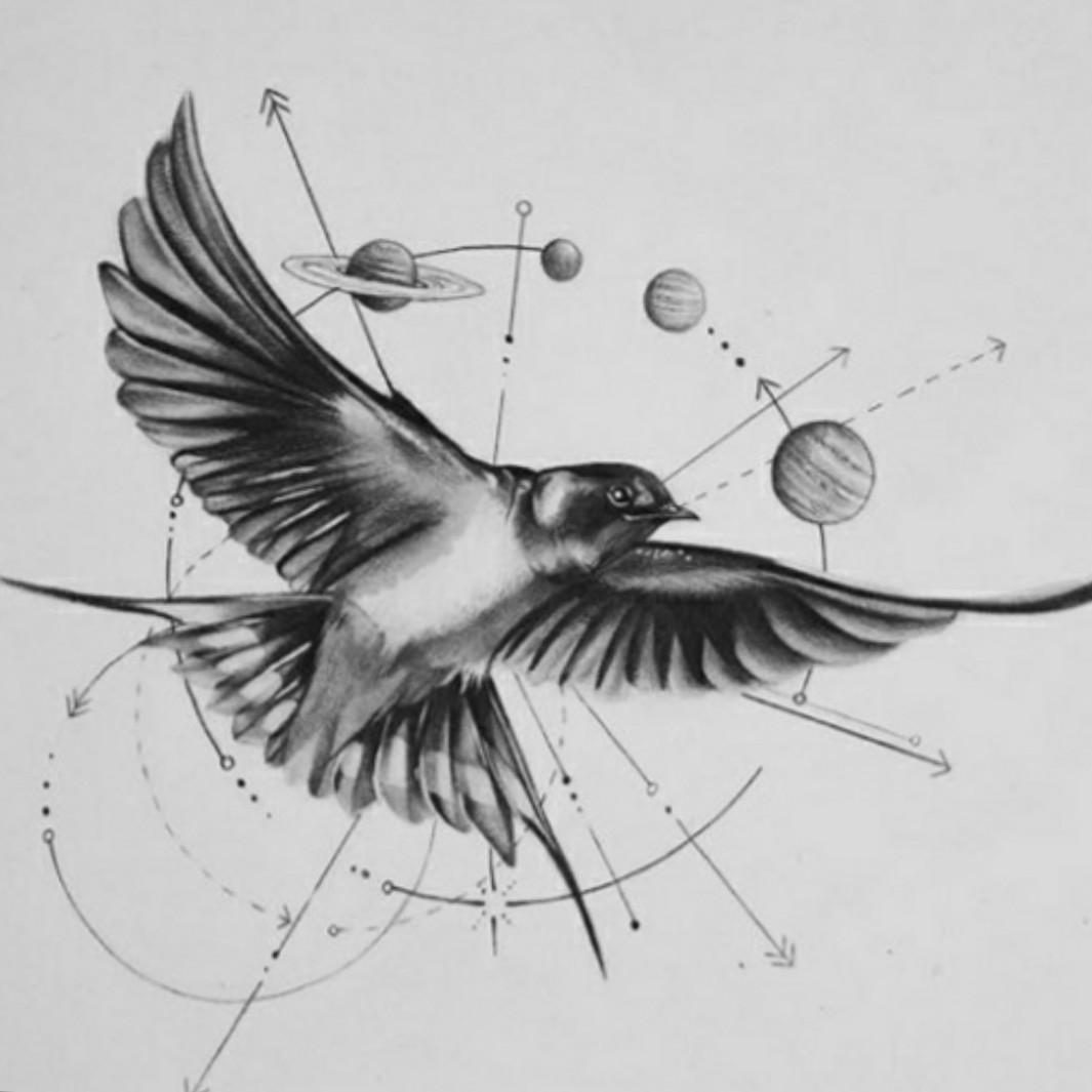 Tattoo vorlage schwalbe Shawn Mendes'