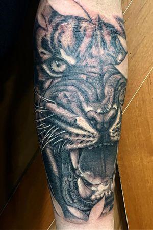 Realism Tiger half-sleeve