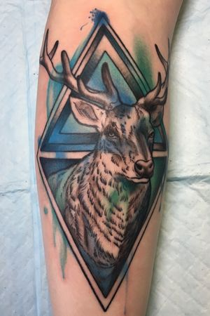 #colorwash stag and geometry