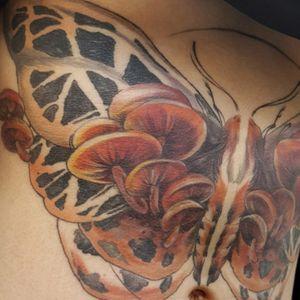 Sternum Mushroom Moth Abstract Dark Nature Tattoo