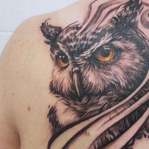 Realistic Black and Grey Owl Bird Tattoo