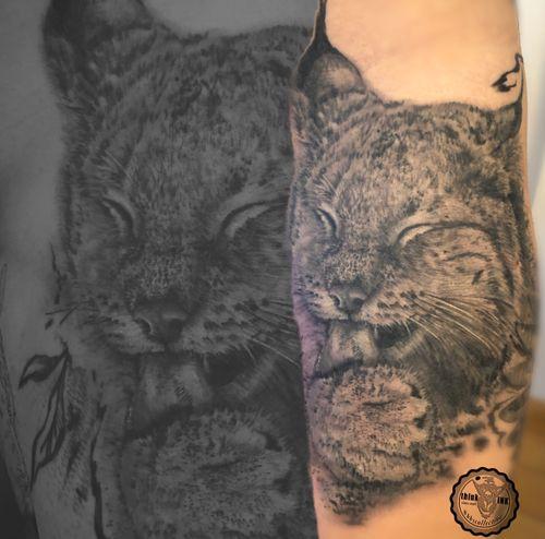 canadian lynx #beautiful #nature #wildcats #blackgreytattoo