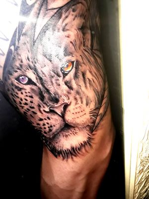#leopardtattoo #liontattoo #halfleopard #HalfLion #jungle #animal #realism