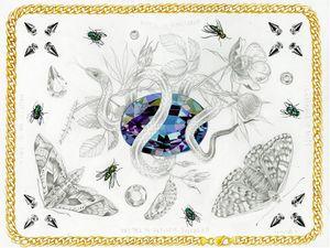 Fine art by Meg Adamson #MegAdamson #ReliquaryTattoo #tattooartist #nature #biological #botanical #biologicalillustration #botanicalillustration #illustrative #watercolor #fineart