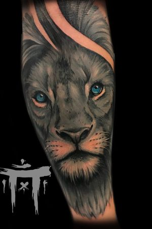 Gra blue Lion #lion #liontattoo #realistic #booking