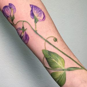 Birth month flower tattoo by Rit Kit #RitKit #sweetpea #birthmonthflowertattoos #birthmonthflowers #flowertattoo #flowers #florals #petals #blooms #leaves #nature #plant #birthmonth