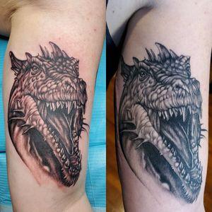 Healed and fresh dragon