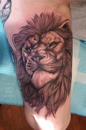Smug Lannister Lion