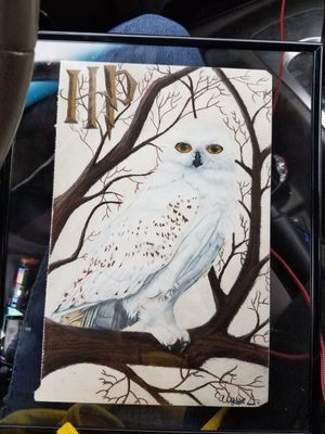 My third request for that same damn owl (now hes hedwig) but with a harry potter symbol added. Got a lot of good practice for a snow owl 😂