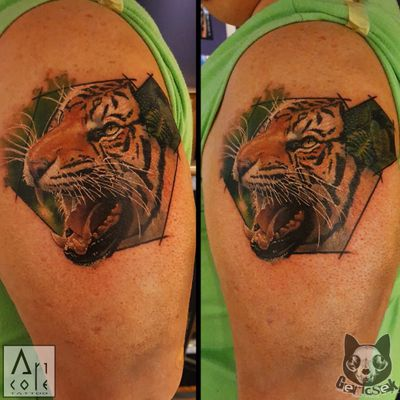 #tiger #cat #wild #jungle #animal #kitty #colortattoo #color #colorfull #realistic #realism #watercolor #abstract #bigcat #detailed #art #gericsek #budapest #hungary #switzerland #basel #wildlife #nature #tattoo #tattooed #tattooing