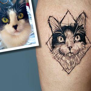 sketch tattoo! #sketchtattoo #cattattoo