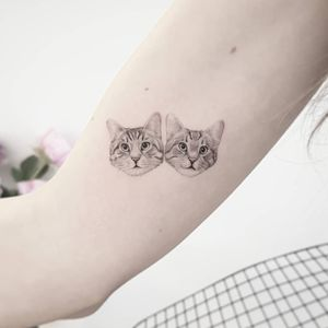 Twin brother cats that cuddle all the time. Just lovely 😻 Cats will amusingly tolerate humans only until someone comes up with a tin opener that can be operated with a paw. Terry Pratchett #tat #tats #tattoo #tattoos #ink #inked #inkedlife #freshlyinked #realism #realistictattoo #cats #twin #brothers #family #protection #details #fineline #cattattoo #thommesenink #truecanvas