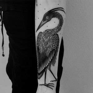 Crane tattoo by Laura Yahna #LauraYahna #cranetattoos #crane #birds #feathers #wings #flying #animal #nature #blackwork #illustrative