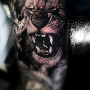 #tattoo #tattoos #tattooed #tattoolife #tattoolovers #inked #inkedup #inkedmag #inkjunkeyz #cheyennethunder #cheyennetattooequipment #elitecartridges #eternalink #art #artist #tattooart #blackandgreytattoo #blackandgrey #greywash #greywashtattoo #lion #liontattoo #stencilstuff