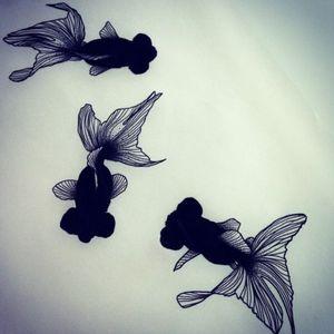 #skitze #blackwork #skitze #vorlage #stencil #fish #goldfish #black #farbe #follow #followforfollower#blackandgrey #instatattoo #germantattooer #natur#spitze #inkspector #tattoodo #farbe #
