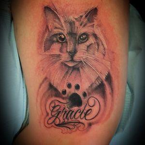 Single needle kitty cat and freehand lettering  #torontotattoo #art #artist #potd #instagram  #3rl #the6