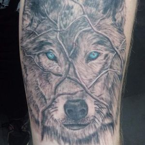 My first tattoo. Wolf hiding in the twigs of a bush, first part to a full sleeve. Will post updates!