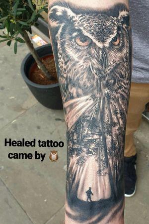 Healed owl tattoo 🤘🦉🦉