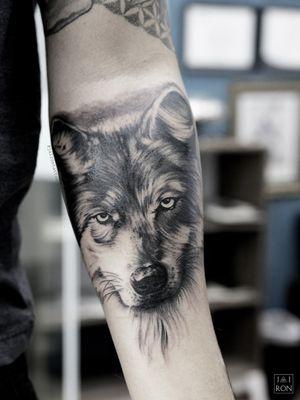 Wolf #wolftattoo #blaclworktattoo #lobotattoo