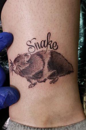 "A memorial of this girls pet hamster RIP""snake"" #denvetattoo #denvertattooartist #blackandgreytattoos #script #letteringtattoo #coloradotattooers #colortattoo #traditionaltattoo #303 #303tattoo #milehighcity #nocturnaltattoo2"
