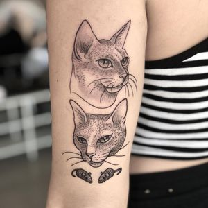 Illustrative tattoo by Tina Poe #TinaPoe #MoonTattooStudio #AustinTexas #Austin #Texas #tattooartist #illustrative #linework #fineline #dotwork #sketch #upperarm #cat #petportrait #mice #mouse