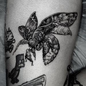 moth! #blackwork #blackworktattoo #tattooflash #tattoodesign #blackworkflash #moth #mothtattoo