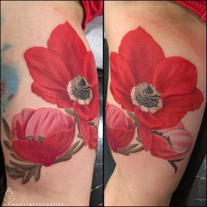 #AnemoneFlowers . . . #anemonetattoo #anemoneflowerstattoo #colortattoo #flowertattoo #tattooartistfromCT #tattoofromhell #customtattoo #darkart #artist #tatuajesenCt #MannyTattooArtist #ManuelCruzTattooArtist #girlwithtattoos #girltattoo #sleevetattoo #realismtattoo #portraittattoo #realistictattoo