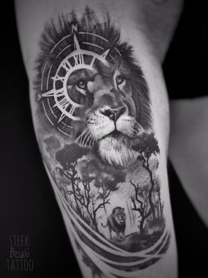 Lion in black and grey